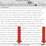 How to Use the Document Word Counter in Scrivener