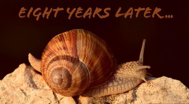eight years blogging