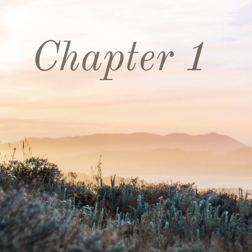 Writing Your First Chapter