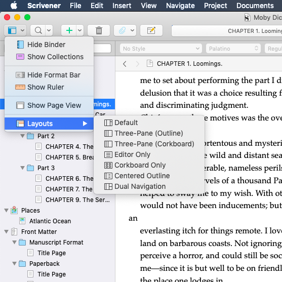 Scrivener Layout Options